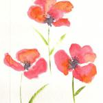 Poppies - Hand painted watercolor  $7