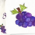 Grapes  $7  Watercolor and ink.  Detail of card and envelope shown.