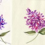 "Lilacs  $7 Watercolor.  6"" square card  Detail of card and envelope shown."